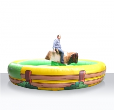 Action Game Bull Riding / Rodeo Anlage