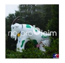 riesige aufblasbare Tiere und Figuren - aufblasbare Ziege P-Weg