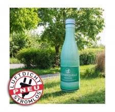aufblasbare luftdichte Produktnachbildung - Pneu Flaschen Römerquelle